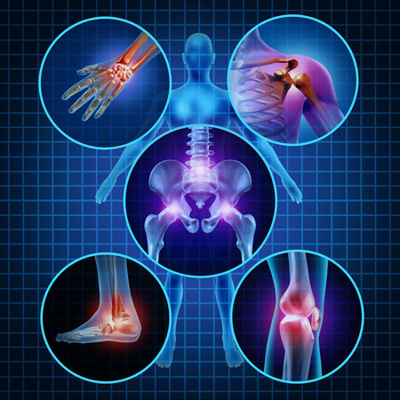 southern musculoskeletal seminars online learning courses